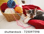Stock photo a cute adorable kitten sleeps on soft woolen sweater on sofa kitten sleeps on sofa next to a 725097598