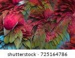 beautiful pattern abstract... | Shutterstock . vector #725164786