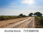 Brazilian Dirt Road In...