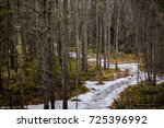 a frozen creek.   Shutterstock . vector #725396992