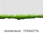 grass border | Shutterstock . vector #725462776
