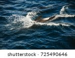 encounter with long finned... | Shutterstock . vector #725490646