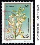 algeria   circa 2000  a stamp... | Shutterstock . vector #725494606
