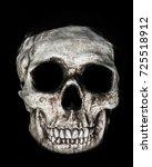 skull image great spooky image...   Shutterstock . vector #725518912