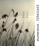 Reeds Silhouetted Against A...