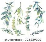 watercolor winter plants set.... | Shutterstock . vector #725639302