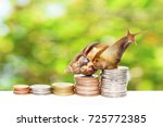 Small photo of Brown snail climbing the pile of coins with natural green and Bokeh background , Financial and commit business concept , Victory and success from patience ,Slow economic growth
