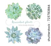 rosette shaped succulents... | Shutterstock .eps vector #725783866