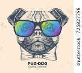 retro hipster animal pug dog....   Shutterstock .eps vector #725827798