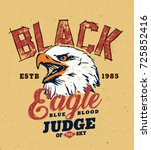 eagle. hand made wild eagle...   Shutterstock .eps vector #725852416