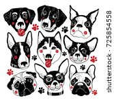 vector hand drawn dogs set... | Shutterstock .eps vector #725854558