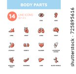 body parts   set of modern...