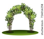 arch with bush clematis and... | Shutterstock .eps vector #726016258