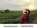 farmer working on coffee field... | Shutterstock . vector #726029302