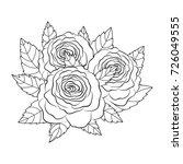 sketch rose flower .pencil... | Shutterstock .eps vector #726049555