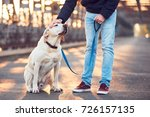Stock photo morning walk with dog young man with his labrador retriever on the iron bridge at the sunrise 726157135