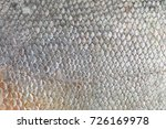 texture of pacu fish fish scale ... | Shutterstock . vector #726169978
