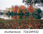colored trees reflected in the... | Shutterstock . vector #726189532