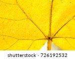 macro of de focused yellow... | Shutterstock . vector #726192532