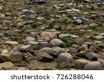 round stones on the river bank. ... | Shutterstock . vector #726288046