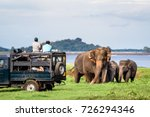 elepahants safari in minneriya  ... | Shutterstock . vector #726294346