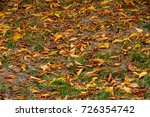 autumn . leaves on the ground... | Shutterstock . vector #726354742