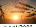 silhouette of wheat on a... | Shutterstock . vector #726363022