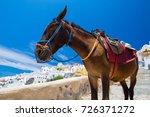 donkey taxis in santorini ... | Shutterstock . vector #726371272