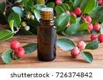 a bottle of wintergreen... | Shutterstock . vector #726374842