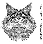 the head of a cat. fluffy... | Shutterstock .eps vector #726386248