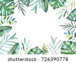 tropical plants collection.... | Shutterstock . vector #726390778