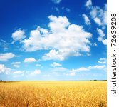 wheat field and blue sky with... | Shutterstock . vector #72639208