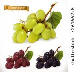 red and white table grapes ... | Shutterstock .eps vector #726466258