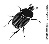 beetle is a coleopterous insect.... | Shutterstock .eps vector #726528802