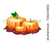 ripe pumpkin vegetables at soil.... | Shutterstock .eps vector #726614602