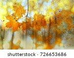 Autumn Leaves Over The Rainy...