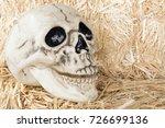 human skull on straw bales... | Shutterstock . vector #726699136