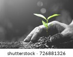 men hands are planting the... | Shutterstock . vector #726881326