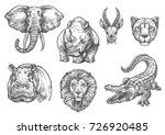 wild african animals sketch... | Shutterstock .eps vector #726920485