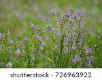 phu soi dao national park... | Shutterstock . vector #726963922