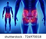 3d illustration of hip skeleton ... | Shutterstock . vector #726970018