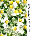 seamless citrus pattern with... | Shutterstock .eps vector #727020412