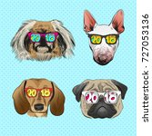 dog wearing sunglasses  year...   Shutterstock .eps vector #727053136