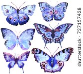 beautiful blue butterfly... | Shutterstock . vector #727157428