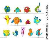 cartoon colorful flock of birds ... | Shutterstock .eps vector #727158502