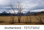 dry tree lying on dry  cracked... | Shutterstock . vector #727171012