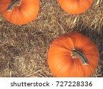 rustic fall pumpkins and hay... | Shutterstock . vector #727228336