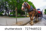 Horse And Carriage For The...