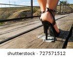 beautiful girl in expensive... | Shutterstock . vector #727571512