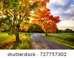 maple tree with colored leafs... | Shutterstock . vector #727757302